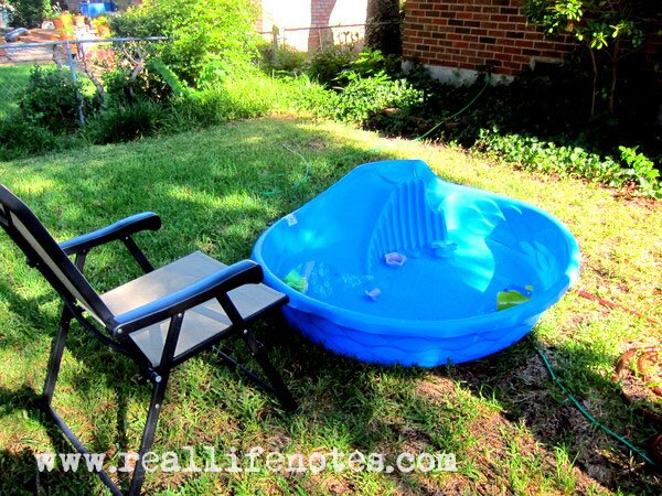 Backyard Baby Pool