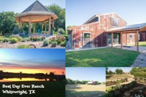 Best Day Ever Ranch: The Perfect Weekend Getaway
